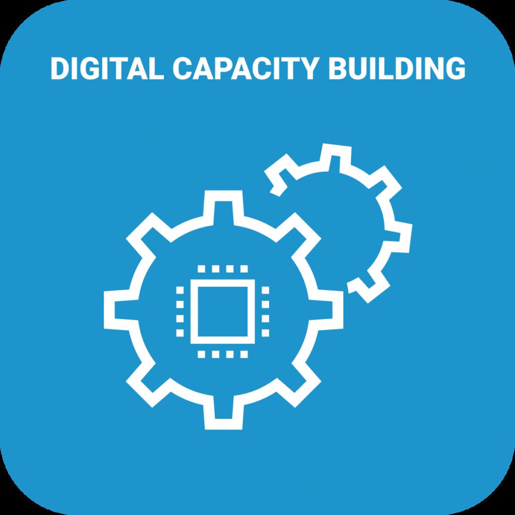 Digital Capacity Building Icon